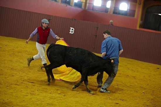 nauka walki z bykiem Andaluzja