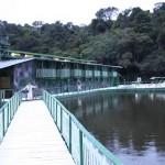 nocleg w amazonii