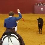 walka z bykiem